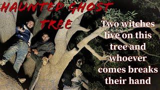 HAUNTED TREE IN UTTAR PRADESH | THE REAL ONE