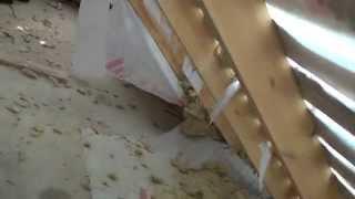 видео Минвата сосет ..... конденсат и влагу
