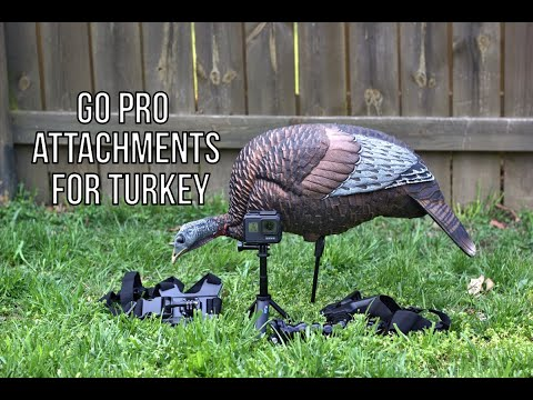 Best Go Pro Attachments For Turkey Hunting (Tutorial)