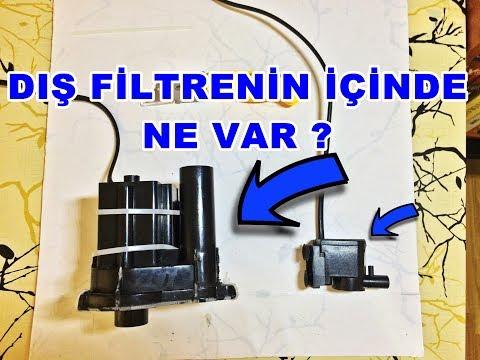 Dev Akvaryum Motoru - Dış Filtre İçinden Çıkanlar ?