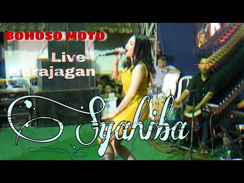 bohoso-moto-syahiba-saufa-feat-dobi-kendang-siluman-  -live-gerajagan-  -terbaru
