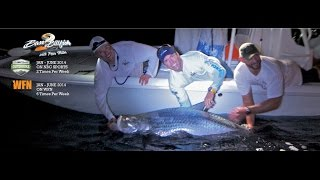Sat-tagging Giant Tarpon with San Diego Chargers Jarrett Johnson | Peter Miller Fishing