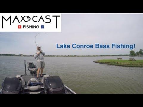 Lake Conroe Bass Fishing!