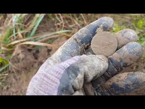 Поздняя осень, а мы копаем, серебро, медь и медаль
