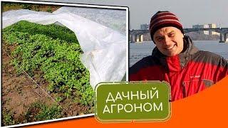 Агроволокно на огороде: как победить климат #дачныйагроном