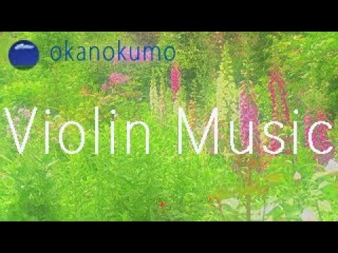 Relaxing Violin Music〜Beautiful Scenery〜Beautiful Flowers〜癒しのバイオリン曲