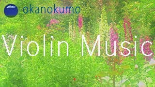 Relaxing Violin Music〜Beautiful Scenery〜Beautiful Flowers