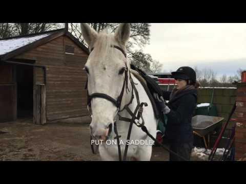 Eden Heeler - GCSE Horse Riding 2016