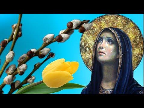 Вербное  Воскресенье . Когда освящают вербу  в субботу или воскресение .#Мирпоздравлений