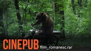 URSUL | THE BEAR | Film Romanesc comedie | CINEPUB