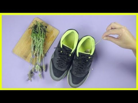How to Prevent Smelly Shoes with 5 Home Remedies
