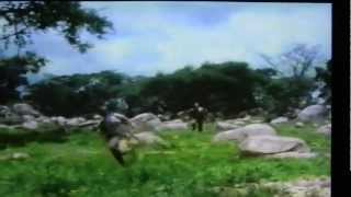 Video Tuxedo Warrior 1981 ( Africa ) Bush Run Part Two download MP3, 3GP, MP4, WEBM, AVI, FLV November 2017