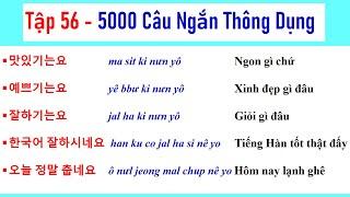 [ TẬP 56 ] 5000 CÂU TIẾNG HÀN NGẮN THÔNG DỤNG   실제로 자주 쓰는 한국어 문장들