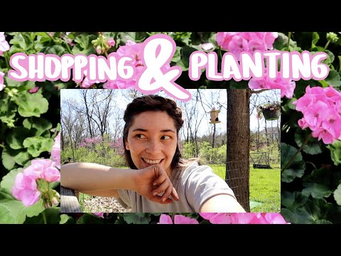plant shop w/ me + planting my first round of flowers!!!