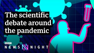 The science of Covid: Who's right and who's wrong? - BBC Newsnight