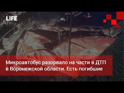 Микроавтобус разорвало на части в ДТП в Воронежской области. Есть погибшие