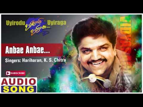 Anbe Anbe Song | Uyirodu Uyiraga Tamil Movie Songs | Ajith | Richa Ahuja | Vidyasagar | Music Master