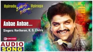 Anbe Anbe Song | Uyirodu Uyiraga Tamil Movie Songs | Ajith | Richa Ahuja | Vidyasagar | Music Master