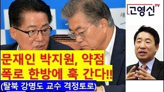 [고영신TV] 탈북, 이렇게 후회한 적 없다!! 조국, 용서받을 수 없는 인간!! (출연: 강명도 전경기대 초빙교수)