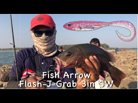 Fish Arrow Flash J Shad 3in SW | Kerala fishing Video | Red Snapper and Trevally fishing using Shad