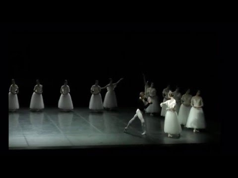 Friedemann Vogel  Giselle variation 2.act