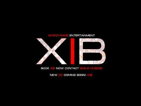 XIB - 2013 Trampoline Booty (Backline)