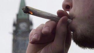 Liberal cabinet ministers conference on marijuana legislation