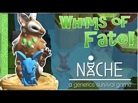 A Bouncing Blue Baby!! 🍀 Niche: Whims of Fate Challenge - Episode #14