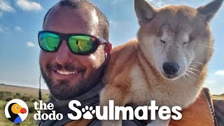 Guy Carries His Blind Dog 800 Miles To Help Get Her Confidence Back | The Dodo Soulmates