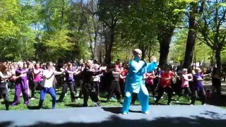 World Tai Chi & Qi Gong Day 2016 In Porto - Chen 11 Form