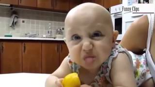 Funny video Funny Babie BABİES Eating Lemons for First Time Compilation 2015