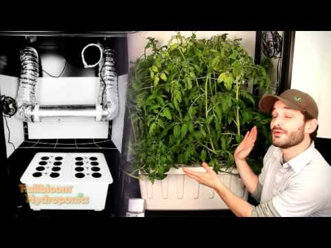 Super Closet Deluxe Grow Cabinet - YouTube