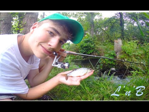 Mini Stream Fishing With A PEN ROD