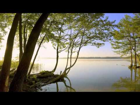 Oliver Shanti & Friends  - Well Balanced
