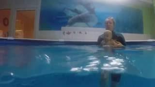 обучение плаванию с рождения Наши дети 1,1 и 3,3
