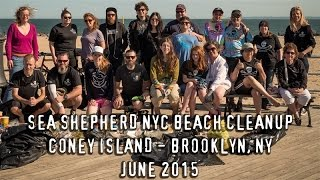 Sea Shepherd NYC World Oceans Day Beach Cleanup
