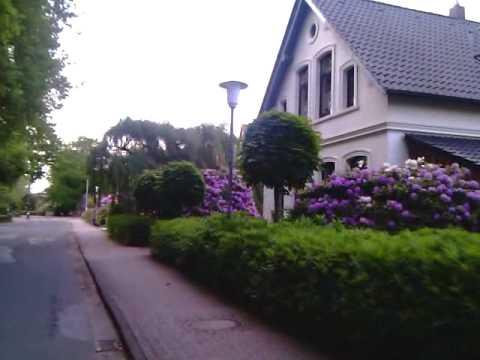 видео: Ландшафтный дизайн в Рязани и Москве. bad zwischenahn.mp4