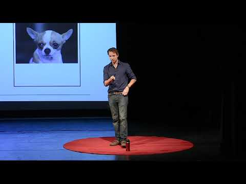 Your Brain, Your Life | Jared Horvath | TEDxYouth@ReddamHouse