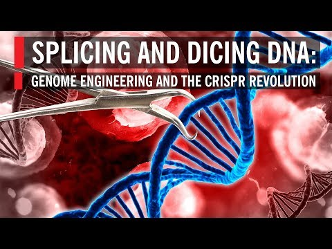 Splicing and Dicing DNA: Genome Engineering and the CRISPR R