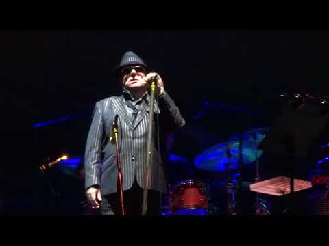 Van Morrison  5  Roll With The Punches  Hershey  91017