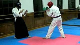 Aikido VS Taekwondo 合気道とテコンドーで闘ってみました