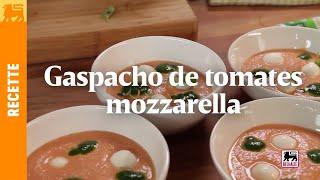 Gaspacho de tomates mozzarella et huile au basilic