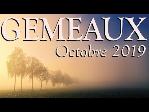 GEMEAUX - octobre 2019 ~ Un état des lieux s'impose ...