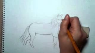 Как рисовать лошадь(Это видео загружено с телефона Android., 2013-01-18T17:49:04.000Z)