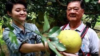 發掘台灣農業新經濟