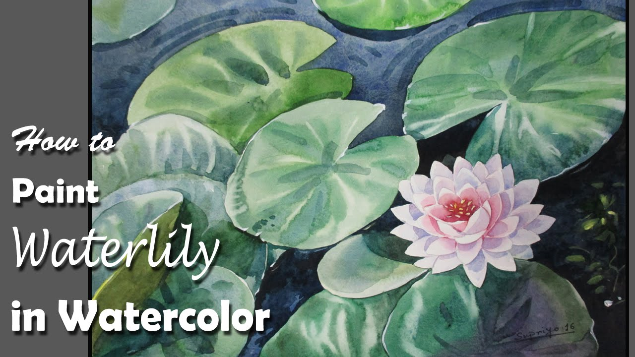 How to Paint Water Lily in Watercolor  step by step  YouTube