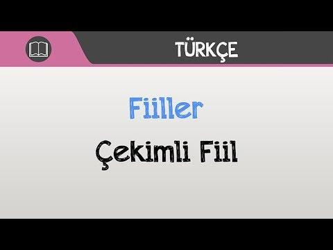 Türkçe | 7.Sınıf | Fiiller | Çekimli Fiiller | Kip Kişi Ekleri | +PDF