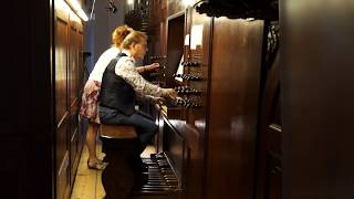 R.Vaughan Williams  RHOSYMEDRE  Willem van Twillert  Lohman-organ  Farmsum