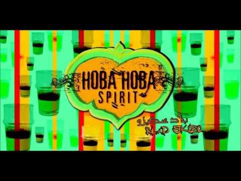 SPIRIT 2011 TÉLÉCHARGER HOBA HOBA