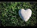 American Authors Heart Of Stone Lyrics mp3